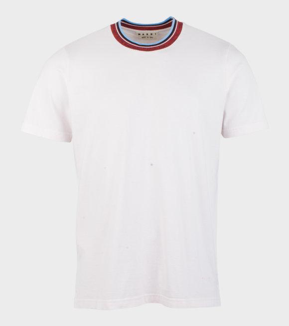Marni - Cotton T-shirt W. Striped Collar Pink