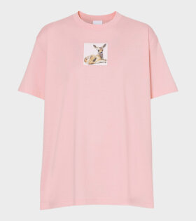 Devon Candy T-Shirt Pink