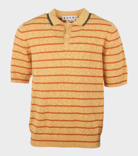 Striped Polo Knit Orange - dr. Adams
